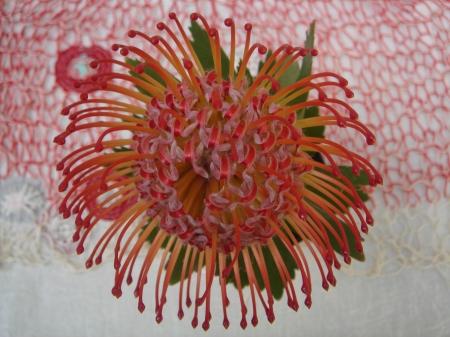 Willemien de Villiers | pincushion from my garden + new textile